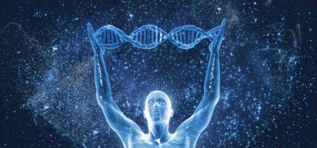 È opinione diffusa che la dinamica biologica sia interamente dominata da meccanismi chimici, da eventi molecolari che si susseguono in modo ordinato nel tempo e nello spazio. Sono stati messi […]