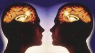 I neuroni specchiosono una classe di neuroni che si attivano quando un individuo compie un'azione e quando l'individuo osserva la stessa azione compiuta da un altro soggetto[2]. Attraverso studi di […]